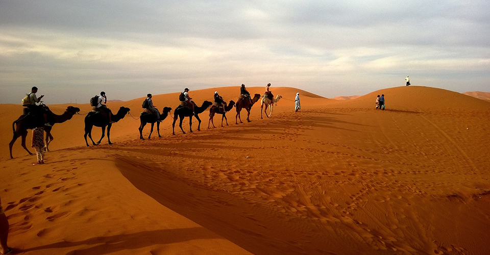Get Acquainted with Arabian Delights: Natural Wonders, Five-Star Dining, Buggying and Much More